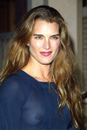 Brooke Shields, A See Through Tit Shot Obscures Your Disclosure You Enjoy The Trendy Hobbies Of  ...
