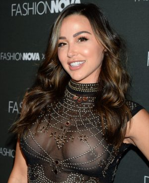 Ana Cheri Big Fake Breasts in Sheer Top