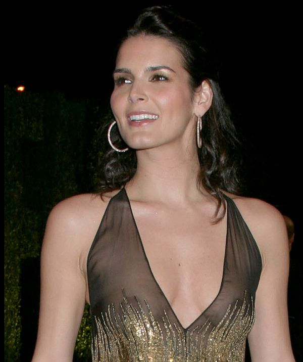 Topless Angie Harmon nudes (11 photo) Pussy, 2015, see through