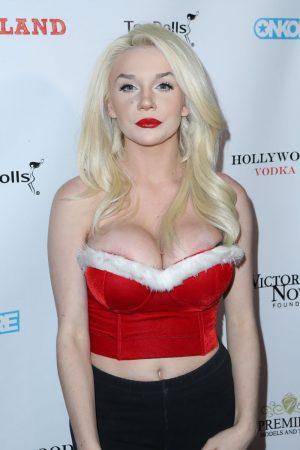 Courtney Stodden Areola Peek on the Red Carpet