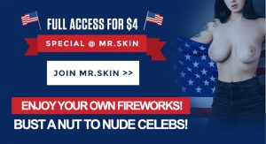 Happy 4th of July @ Mr.Skin for 4 Bucks