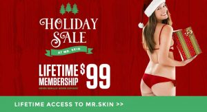 Mr.Skin Holiday Offer for a Lifetime Membership