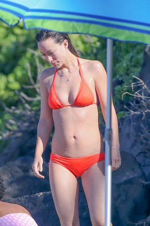 Olivia Wilde Cameltoe on the Beach