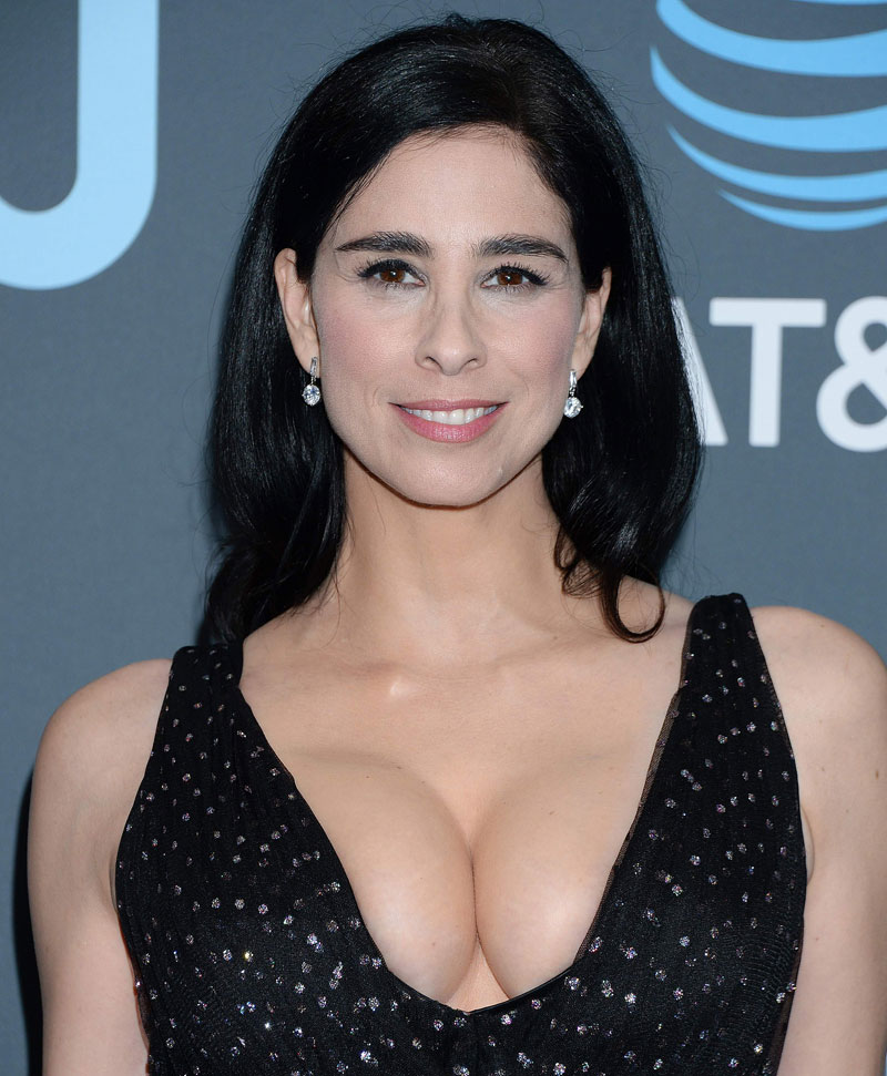 Sarah Silverman Flaunts her Serious Cleavage on the Red Carpet