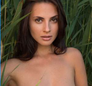 sexy light black nude