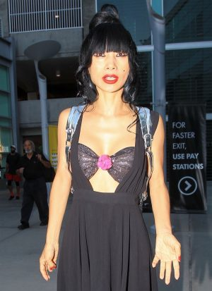 Bai Ling's Huge Nipples in a See Through Bra