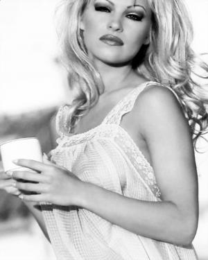 Pamela Anderson Shares Pic of Sheer Lingerie on her Instagram