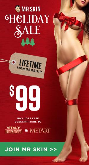 Mr.Skin's 2019 Holiday Sale – Lifetime Membership